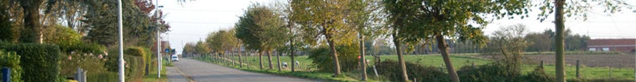 Tuinlei Schelle